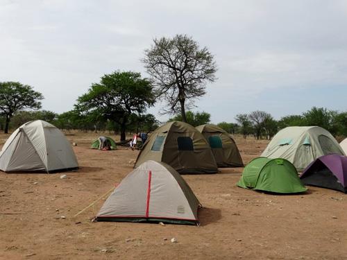 Campamento Serengeti