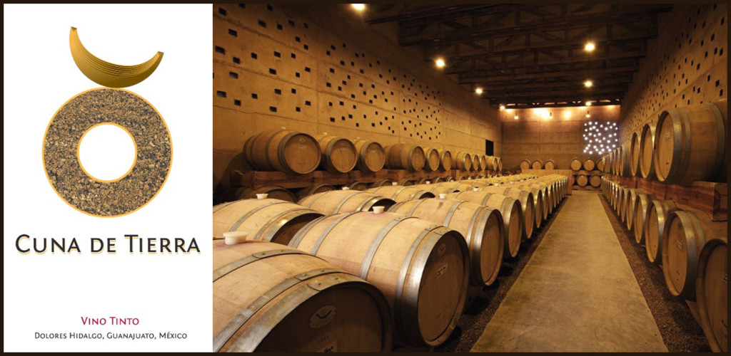 Vega-Manchon-Winery-Cuna-de-Tierra2