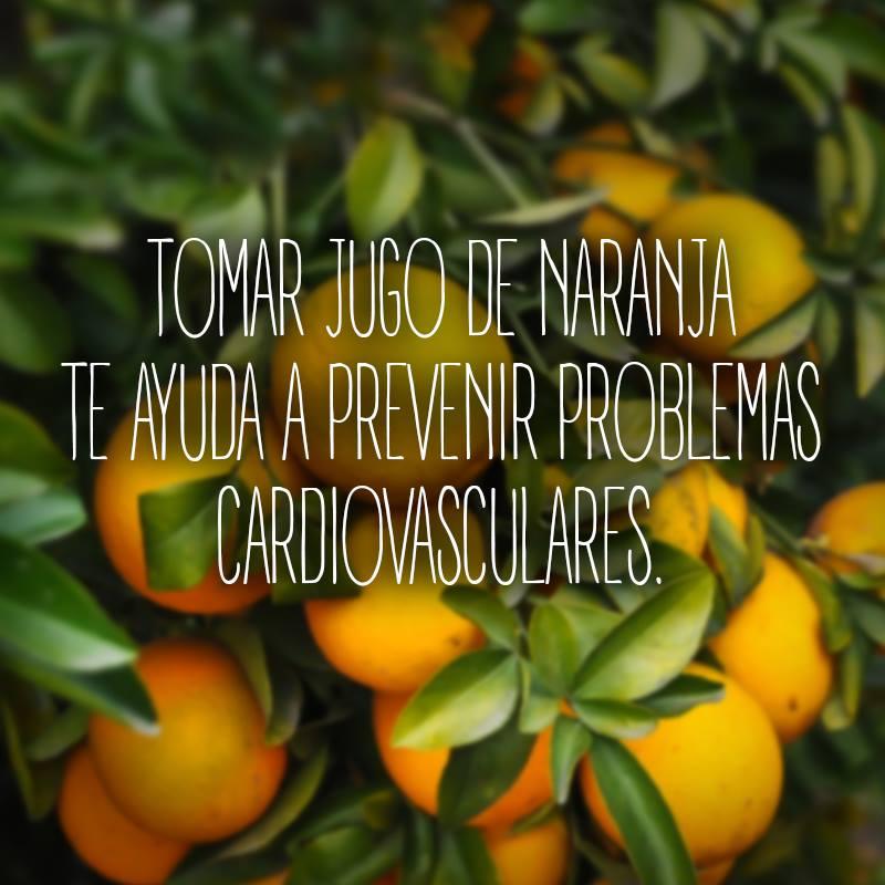 jugo-natura-sabor-naranja1